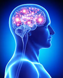 BrainPlus IQ – comentarios – composición – ingredientes – como tomarlo