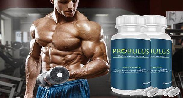 Probulus – como tomarlo – composición – ingredientes – comentarios - como se toma